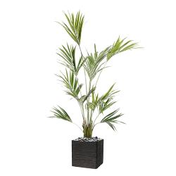 Palmier Kentia Artificiel Howea H 180 cm 192 feuilles en pot