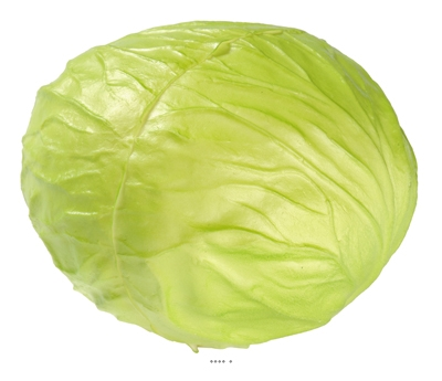 Salade legume artificiel Iceberg D 15 cm latex