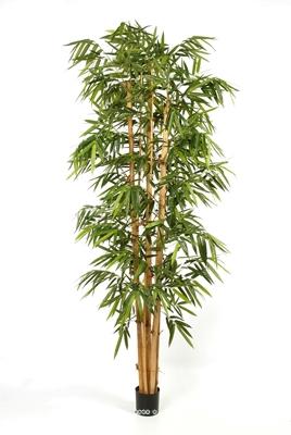 Shopping portail free for Branche bambou artificiel