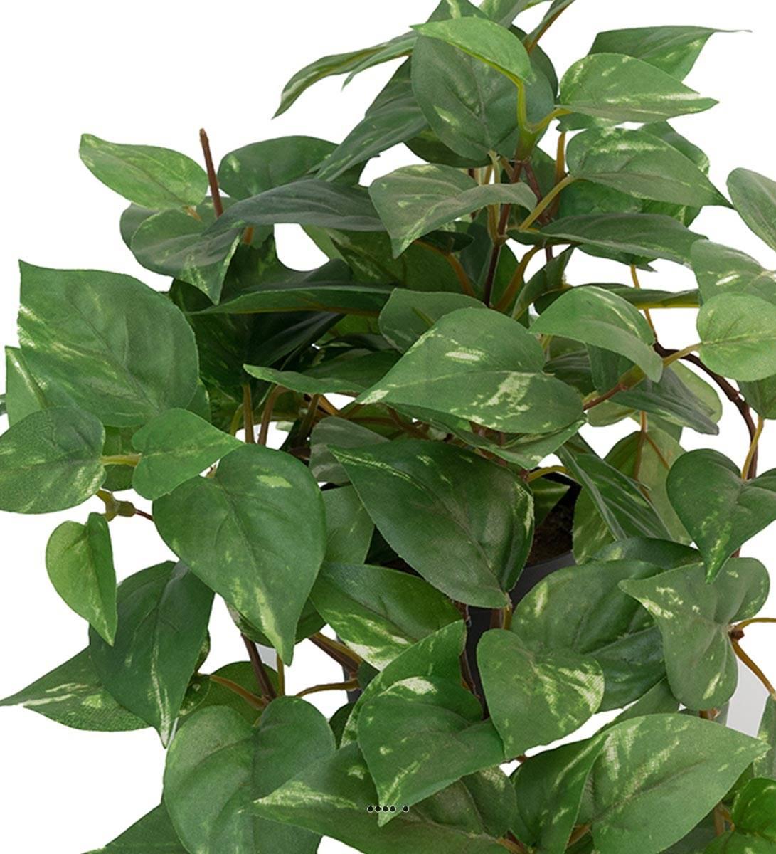 Pothos Artificiel Vert En Pot – 30cm