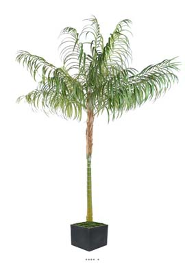 Palmier Areca artificiel en pot superbe tete H 100 cm