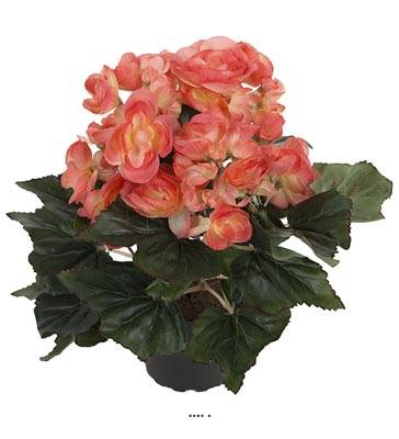 Begonia artificiel en pot H 28 cm superbe qualite Orange-crème