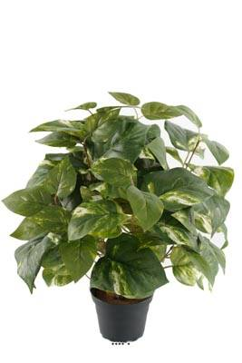 Pothos artificiel en pot H 40 cm, D 34 cm