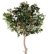 Oranger artificiel tronc naturel en pot avec fruits H 180 cm Orange