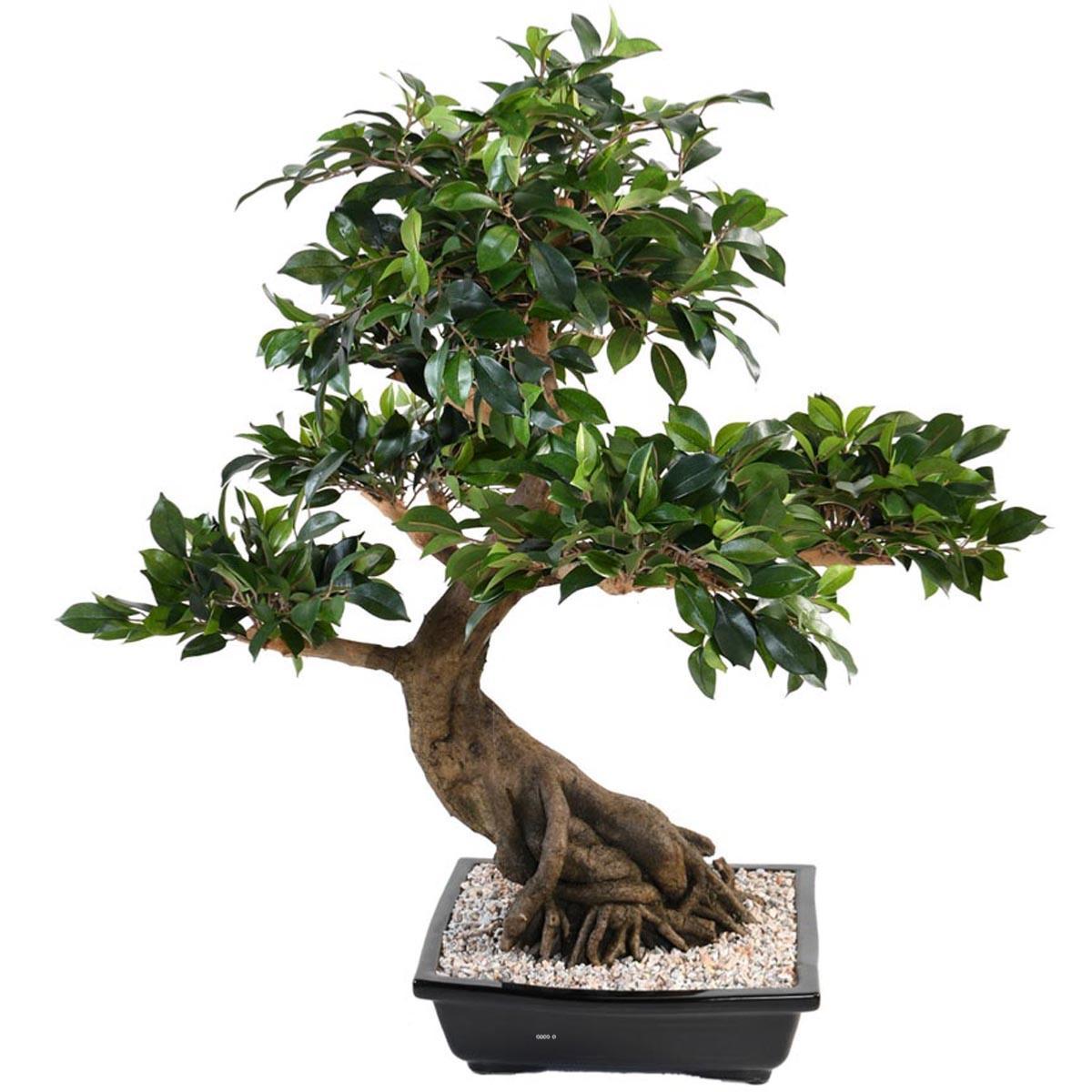 Ficus Artificiel-80cm