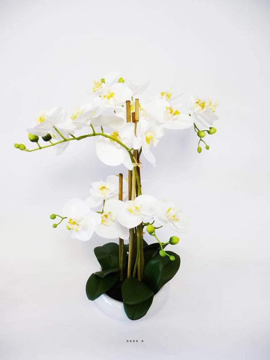 orchidee artificielle 6 hampes en coupe cylindrique ceramique blanc du site. Black Bedroom Furniture Sets. Home Design Ideas
