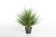 Herbes en touffe artificielles Vert H 50 cm 1624 tiges en pot