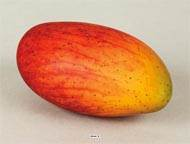 Mangue fruit artificiel Hauteur 13 cm