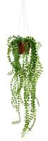 Pilea artificiel en pot suspendu L 55 cm, D 18 cm