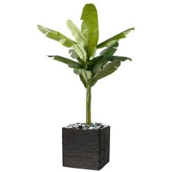 Bananier en pot artificiel H 350 cm Superbe de realisme