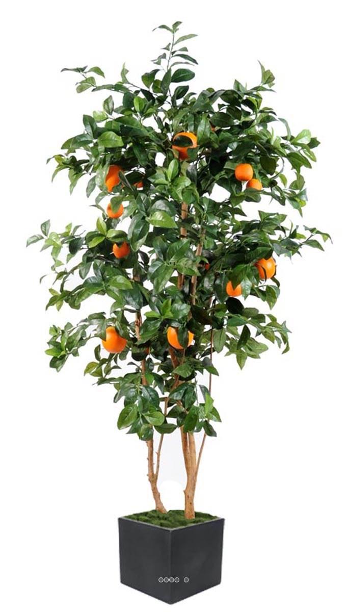 Oranger artificiel tronc naturel en pot avec fruits du site - Oranger du mexique en pot ...