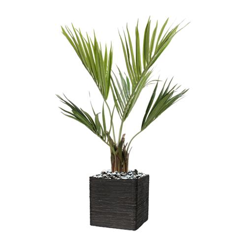 Palmier Kentia Artificiel Howea H 100 cm 78 feuilles en pot