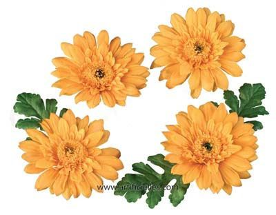 Petales flottants Gerbera 4 pcs  6cm orange clair