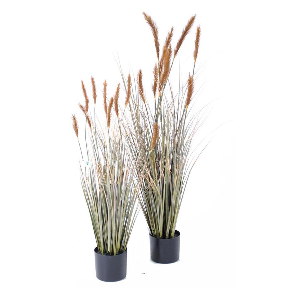 Plantes Fleuries En Pot Exterieur graminee en pot artificielle plante d eau avec quenouilles h 90 cm d 30 cm  caramel