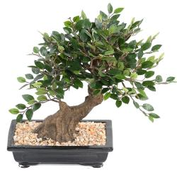 Bonsaï Orme de Chine Artificiel H 30 cm D 28 cm en pot