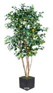Citronnier artificiel tronc naturel en pot avec fruits H 180 cm Jaune citron