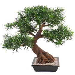 Bonsaï Podocarpus Artificiel H 80 cm D 78 cm en pot