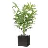 Palmier Kentia artificiel en pot H 170 cm tronc semi-naturel