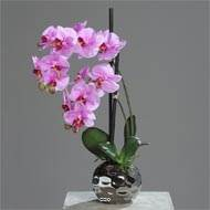 Orchidee artificielle 2 hampes en boule ceramique Argent H 50 cm Rose