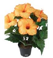 Hibiscus artificiel en pot H 38 cm 6 tetes Orange Safran