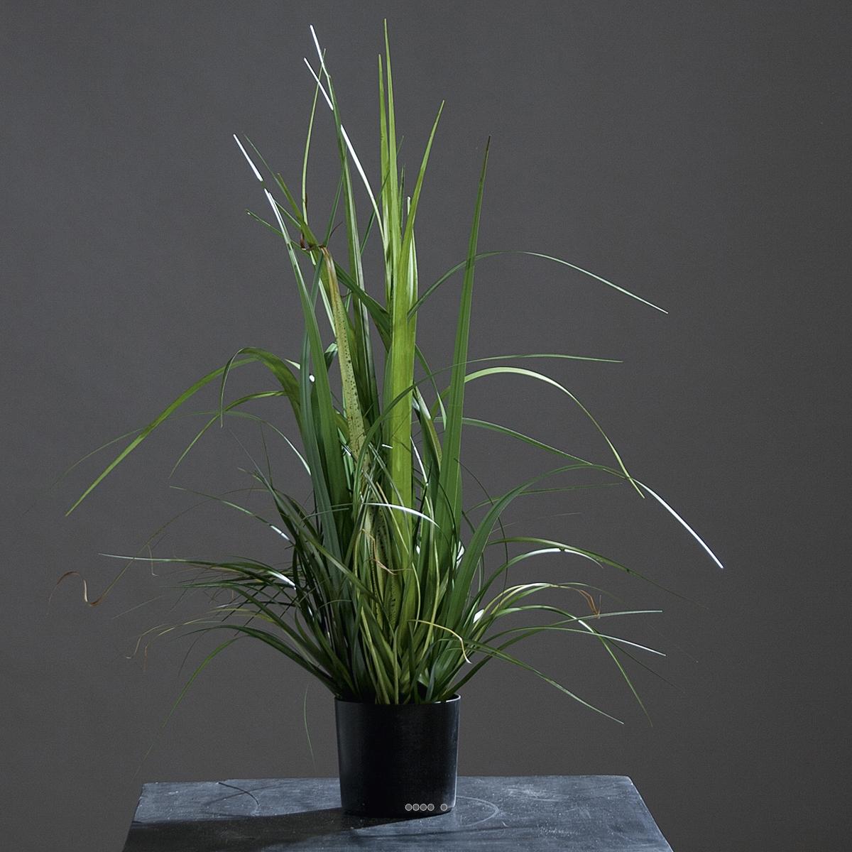 isolepsis herbes folles gramin e artificiel vert en pot d co tr s dense du site. Black Bedroom Furniture Sets. Home Design Ideas