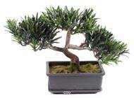 Bonsai artificiel Pin Podocarpus H 23 cm