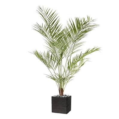 Palmier Areca artificiel H 180 cm en plastique anti-UV
