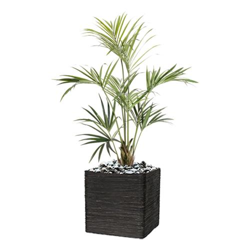 Palmier Kentia Artificiel Howea H 150 cm 164 feuilles en pot
