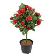 Rosier Boule sur tronc artificiel en pot H 42 cm leste adorable Rouge
