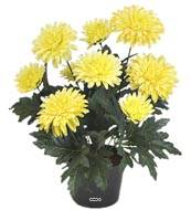 Chrysantheme artificiel en pot H 30 cm 9 fleurs adorable Jaune