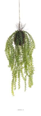 Sedum retombant artificiel en suspension, L 60 cm, D 24 cm