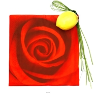 Serviettes de table fleur Rose x20 Rouge en papier 3 plis
