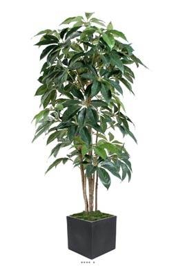 Schefflera artificiel en pot Iroto tronc naturel superbe densite H 150 cm Vert