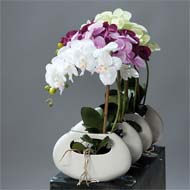 Orchidee artificielle Lavande 1 hampe pot Ceramique Blanc oval H 43 cm