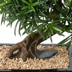Bonsaï Podocarpus Artificiel H 50 cm D 45 cm en pot