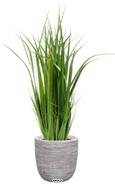 Herbe large artificielle en pot isolepsis factice H 80 cm D 30 cm Vert