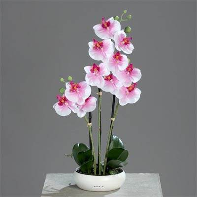 Orchidee artificielle 3 hampes en coupe ceramique H 45 cm toucher reel Blanc rose