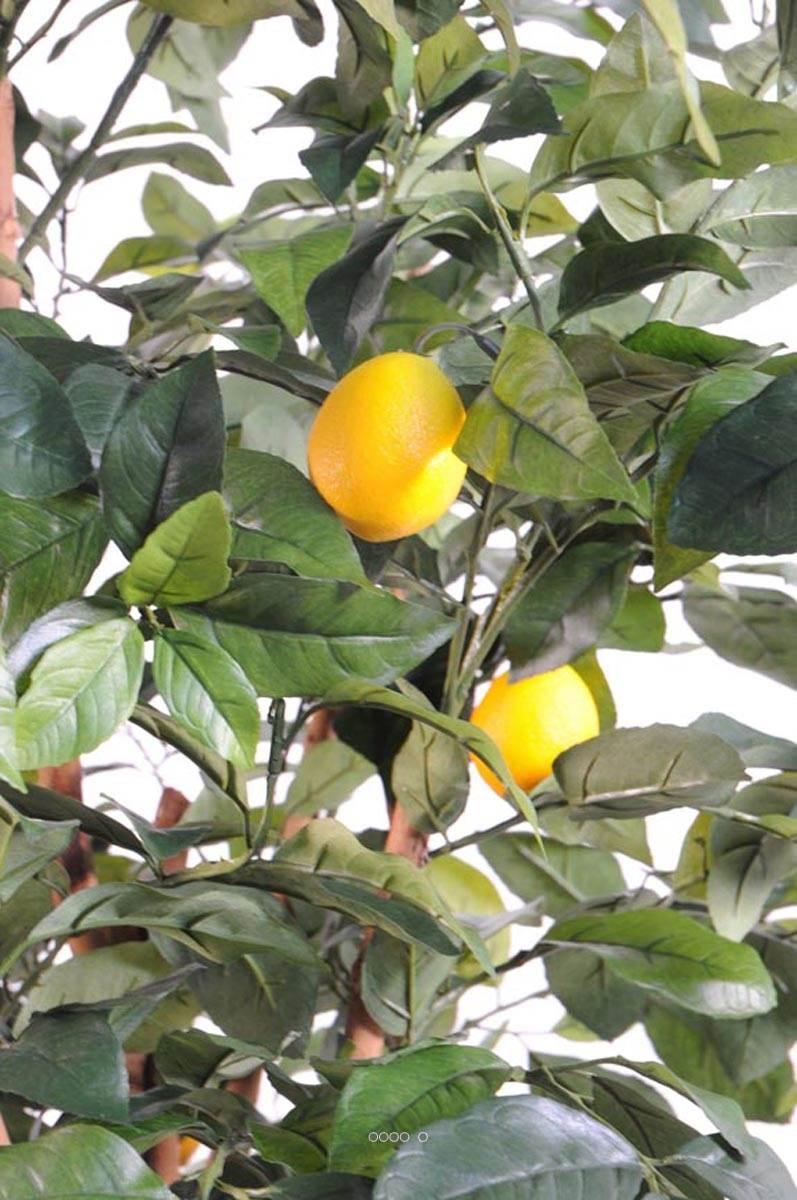 citronnier artificiel tronc naturel en pot avec fruits du. Black Bedroom Furniture Sets. Home Design Ideas