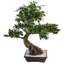 Bonsaï Ficus Artificiel H 80 cm D 77 cm en pot