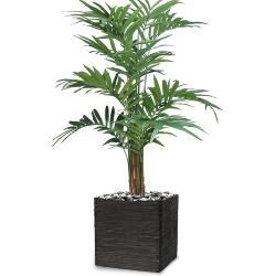 Palmier Kentia Artificiel H 210 cm en pot