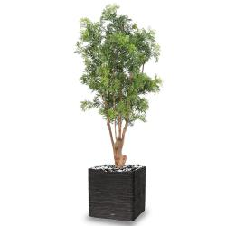 Aralia Arbre Artificiel H 165 cm D 80 cm Feuillage Anti-UV en pot