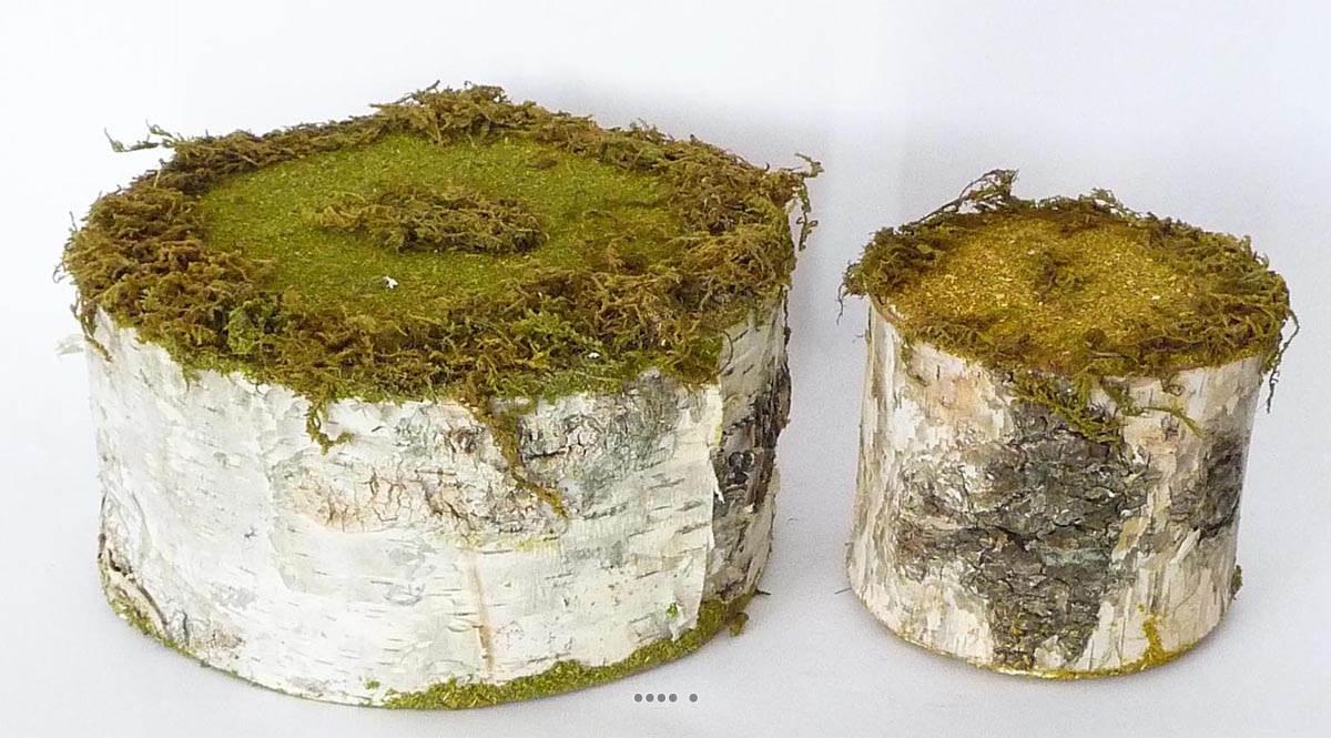 Support tronc polystyrene pour planter decoration vitrine for Tronc d arbre pour decoration