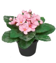 Saint Paulia artificiel en pot H 16 cm Tres fleuri Rose