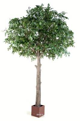 Chene arbre artificiel H 210 cm L 120 cm tronc naturel en pot