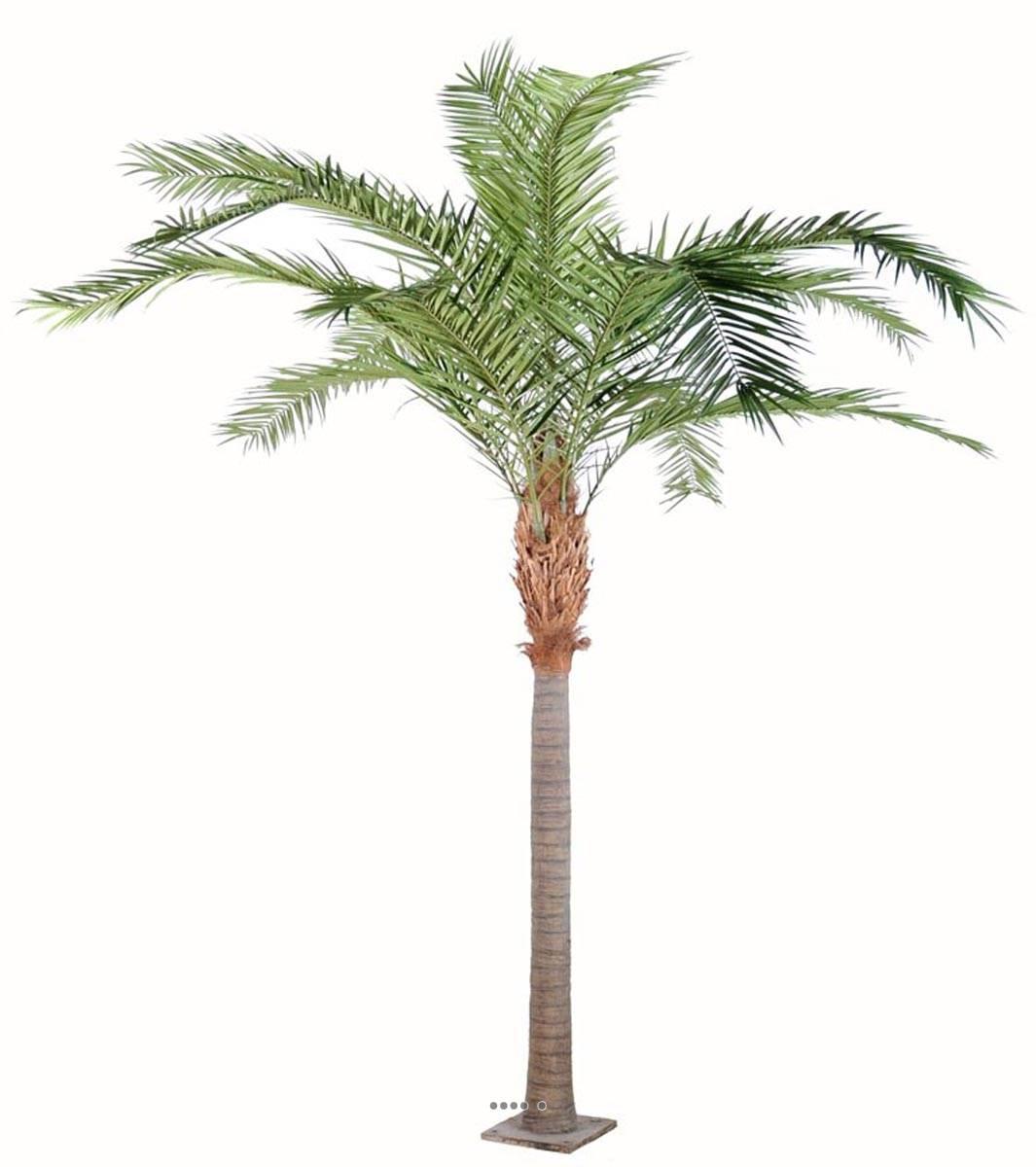 Palmier phoenix artificiel sur plaque finition luxe tres for Palmier factice