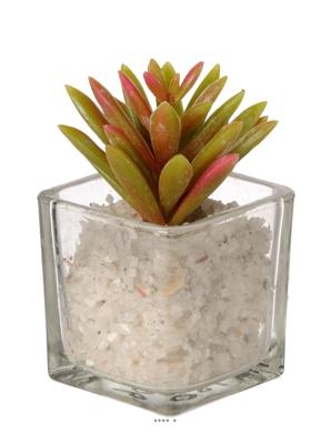 Cact es artificielles plantes grasses et succulentes et for Mini cactus artificiel