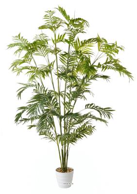 Superbe guide d 39 achat for Achat palmier artificiel
