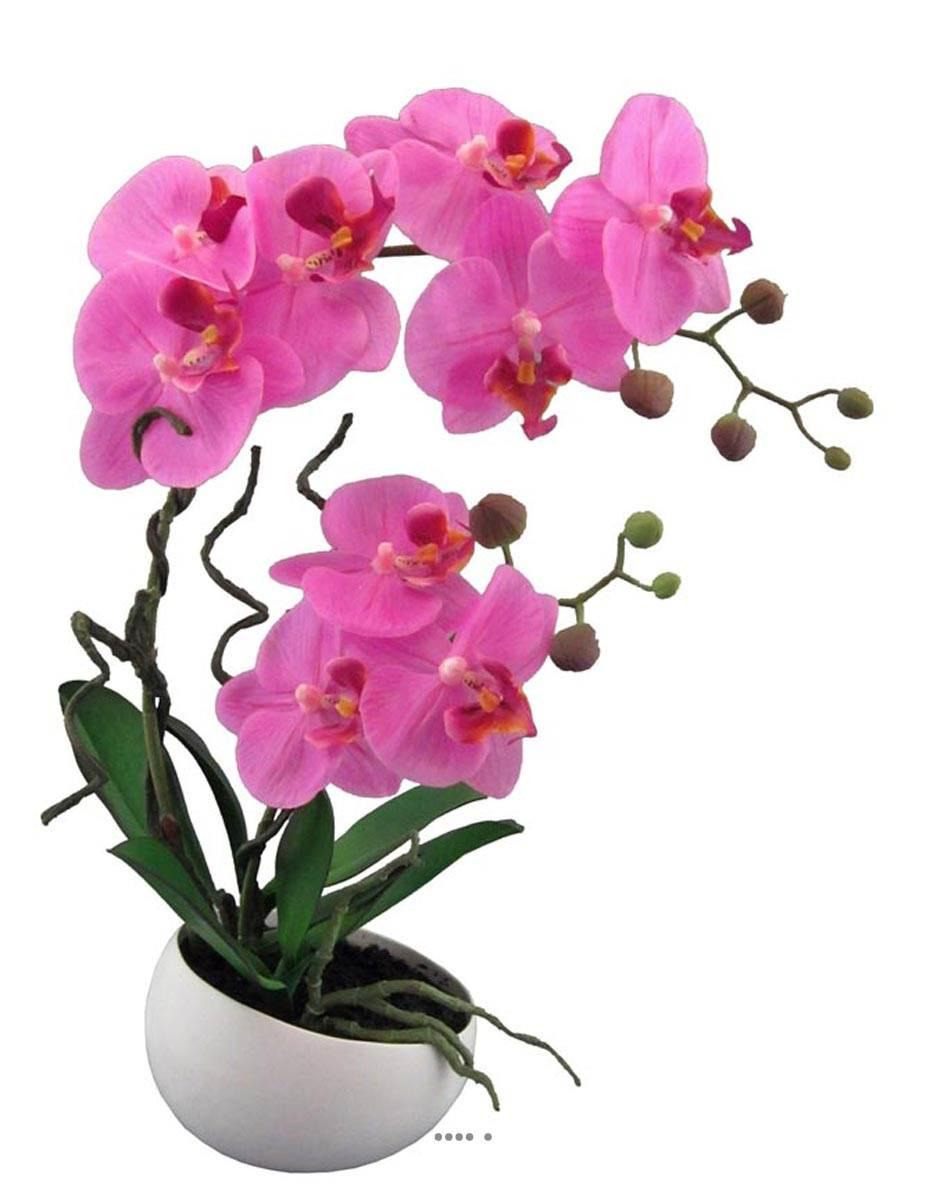 orchidee artificielle 2 hampes en coupe ceramique h 45 cm toucher reel du site. Black Bedroom Furniture Sets. Home Design Ideas