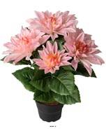 Dalhia commun artificiel en pot, 5 fleurs, H 30 cm Rose