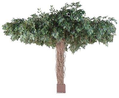 Ficus Artificiel Lianes Umbrella H 320 cm D 450 cm 25600 feuilles en pot